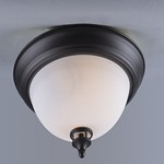 Novus 1-Light Flush Mount