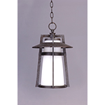Calistoga 1-Light Outdoor Hanging