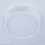 "Wafer LED 10"" RD Wall/Flush Mount"