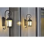 Dover EE 1-Light Outdoor Wall Lantern